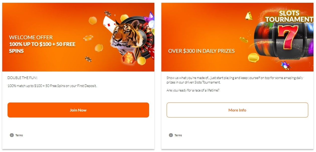 Tiger Riches Casino Promotions